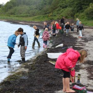 Elever laver undersøgelser ved kyst Egholm foto Søren Mikkelsen