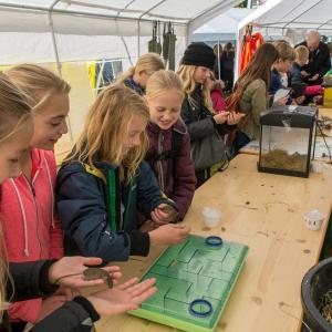 På naturvidenskabsfestival Aalborg sker formidlingen primært fra ung til ung foto Johnni Pape